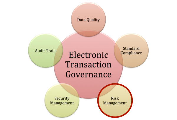 electronic transaction governance risk management